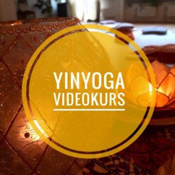 v_yin